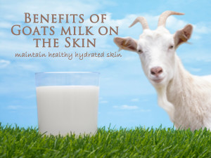 benefitsofgoats2
