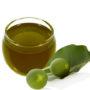 age defying moisturizer, tamanu oil