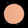 Light Salmon Shimmer