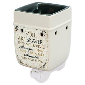 Braver plug-in warmer